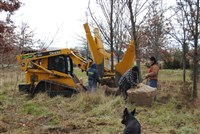 Plant and Tree Relocation - 10: