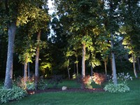 Landscape Night Lighting - 5: